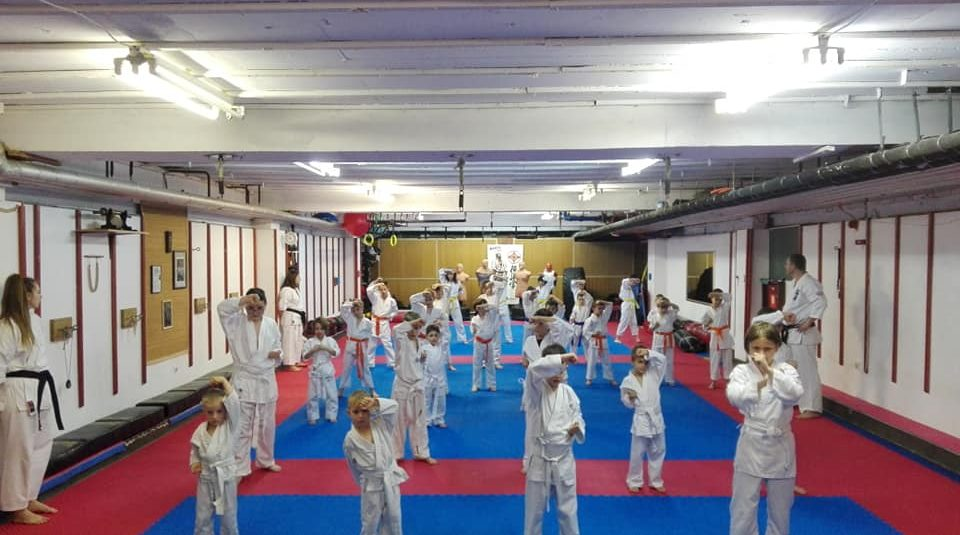 Prihvaćen vrhunski projekt Karate Kluba Sosai!